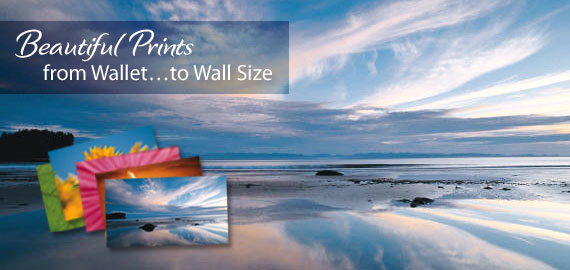 Beautiful Prints from wallet to wall size